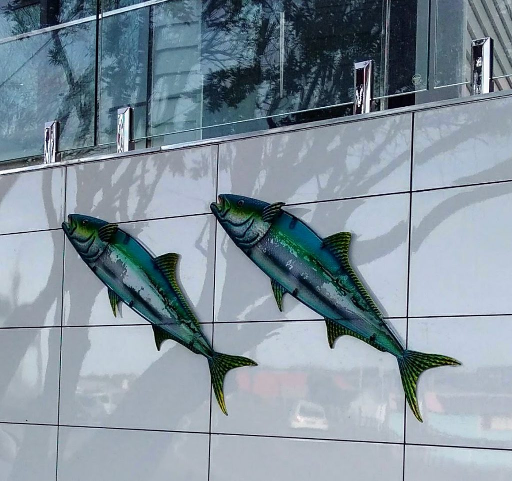 Two blue and green fish artworks on the exterior of a house in Wellington