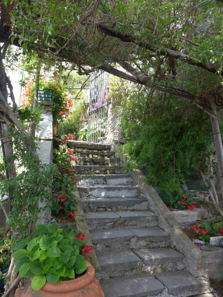 Steps up to a garden in Portofino, Italy