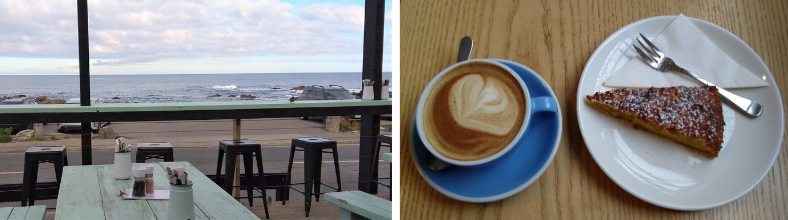 On the deck at the Beach House Cafe, Island Bay, Wellington, facing the sea - and a picture of their delicious coffee and cake