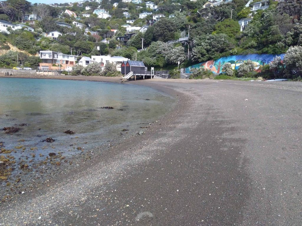 Balaena Bay beach, Wellington
