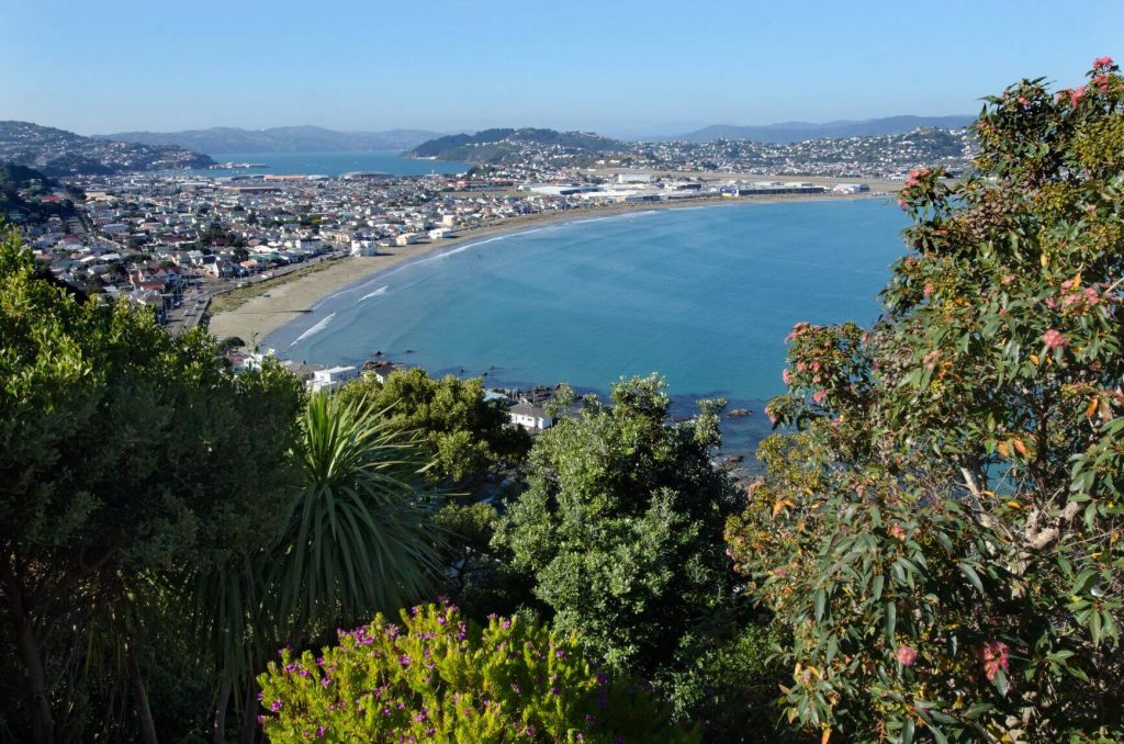 Lyall Bay Beach Wellington