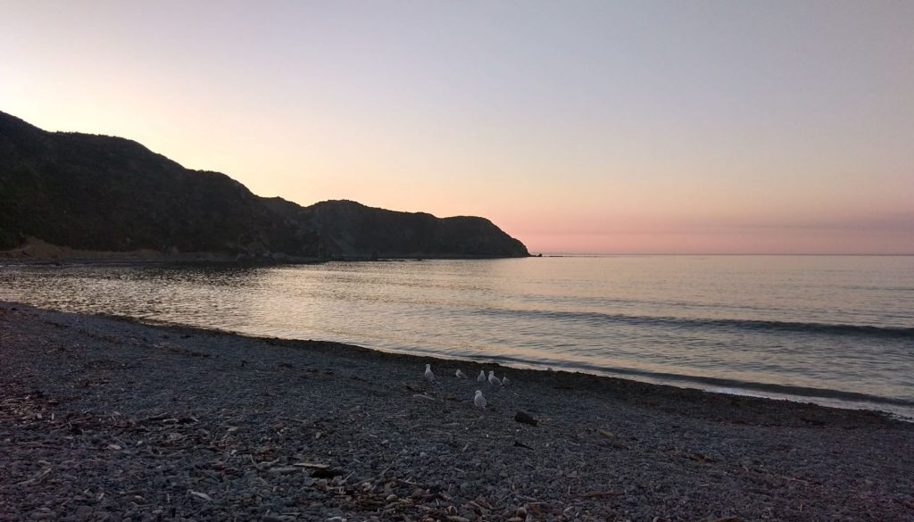 Makara Beach, Wellington, at sunset