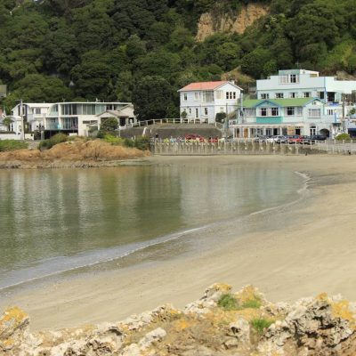 11 best beaches in Wellington, New Zealand