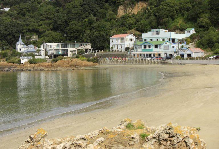 11 best beaches in Wellington, New Zealand