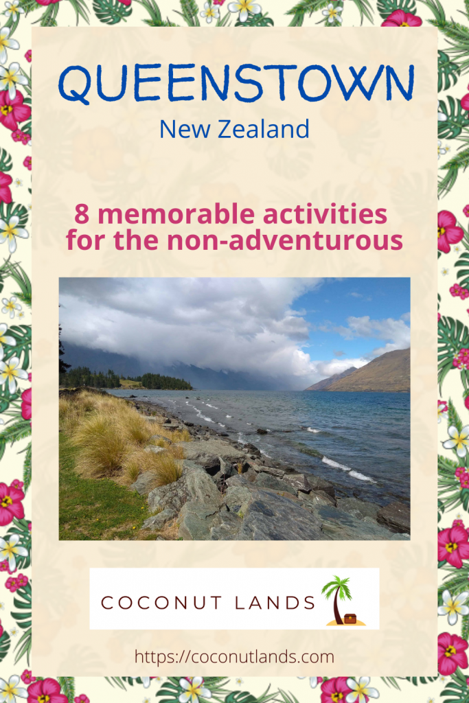 Activities in Queenstown - Pinterest graphic for blog post